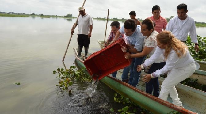 Miles de peces para las Lagunas La Pera y Playa Larga de Centro