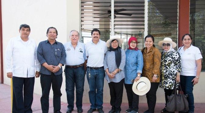 UJAT estará presente en Indonesia