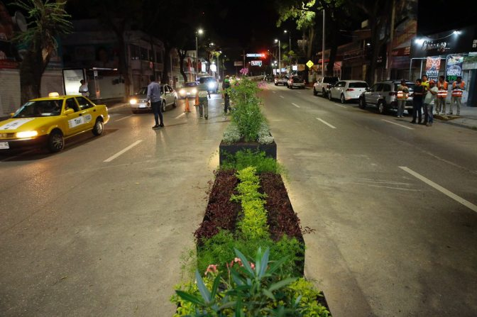 Paseo Tabasco Florece con Jardineras