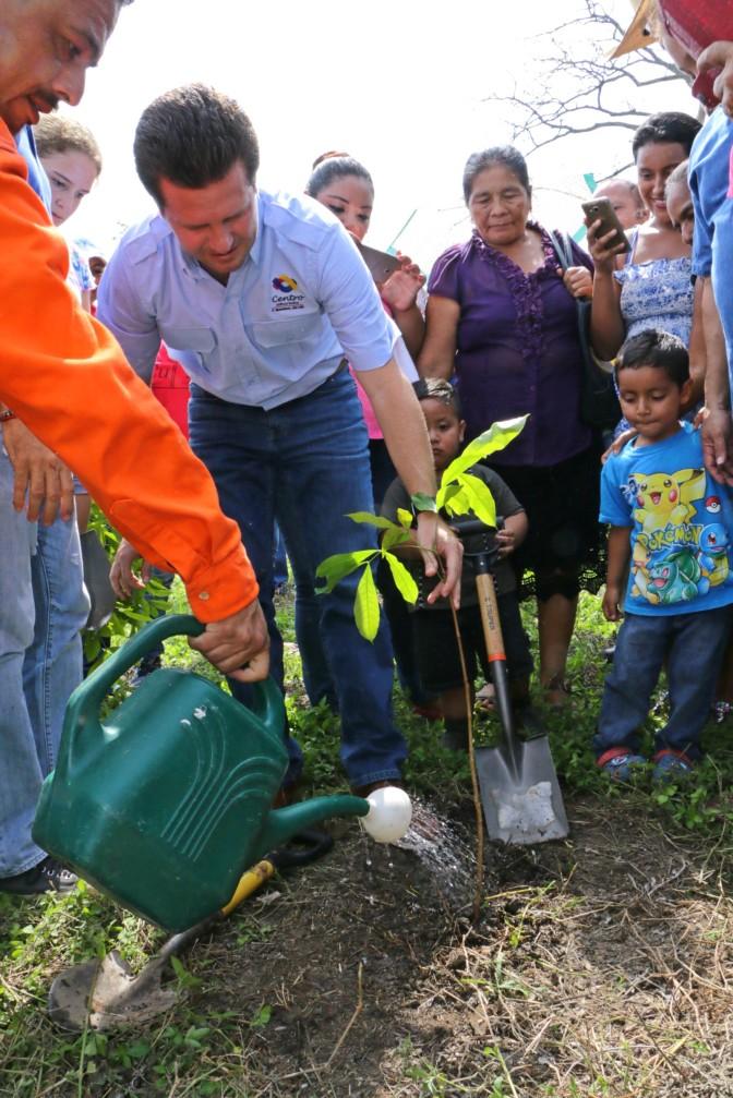Mil árboles más plantados en Centro para combatir cambio climático