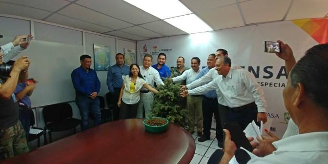 Invita Centro a participar en reciclaje de árboles de Navidad