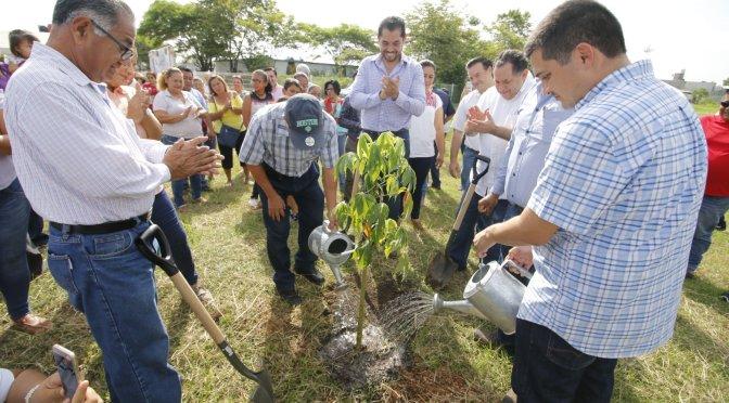 Avanza administración deCentro Somos Todoshacia su meta de reforestar 30 mil árboles
