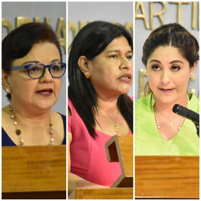 Interés político detrás de defensa a diputada del PVEM