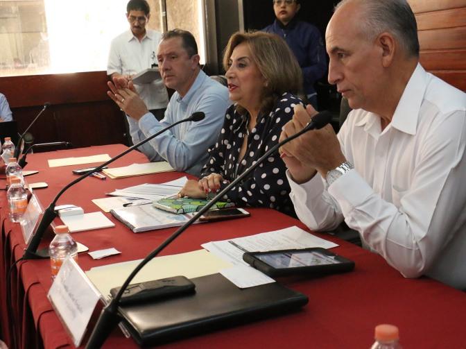 Realizará Salud Plan Emergente  de Prevención y Control del Dengue