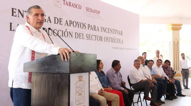 ae76e2ce37 Solo cuestión de trámite de CFE ante Hacienda para cumplir NUEVAtarifa  eléctrica y borrón y cuenta nueva para Tabasco  Adán Augusto